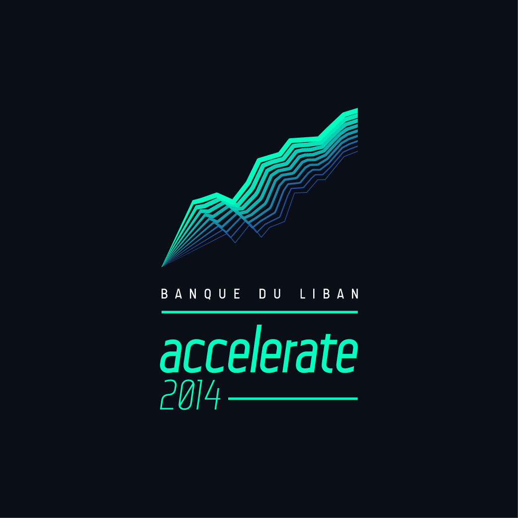 bdlaccelerate brand manual-01